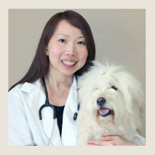 Citrus Veterinary Clinic - Our veterinarian Catherine Cheng VMD